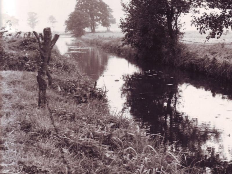 Cultuurhistorie: Van Slienermao tot Delftlanden