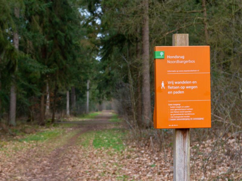 Het Noordbargerbos